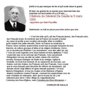 de gaulle immigration quote
