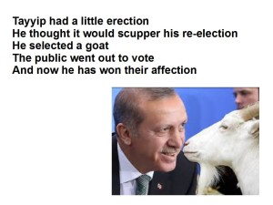 erdogan and goat 2