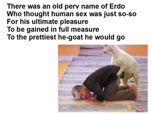 erdogan and goat 5